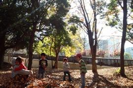 DSC_1462 (2)