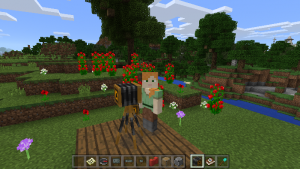 160610_MinecraftEdu_03-300x169