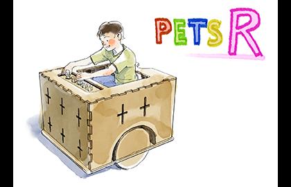 2.PETS-R