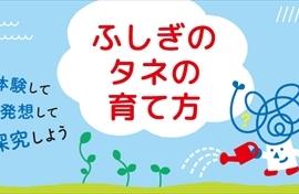 news_4002