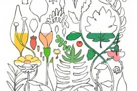 植物の色(線有)