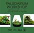 paluda-WS-banner_210710